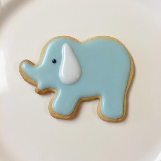 Baby Boy Elephant / © Dallas Bakes! 2013